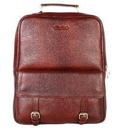 CARVED Women's Leather Laptop Backpack - Brown